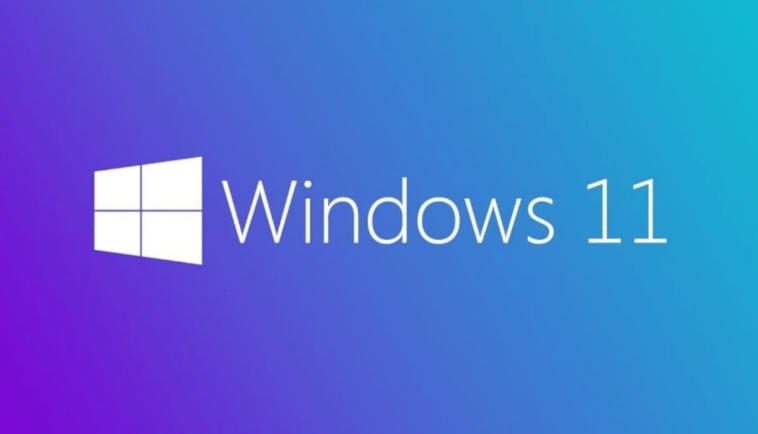 Windows 11_cover